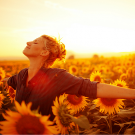 diana-mikas-my-life-crush-photo-sunflowers